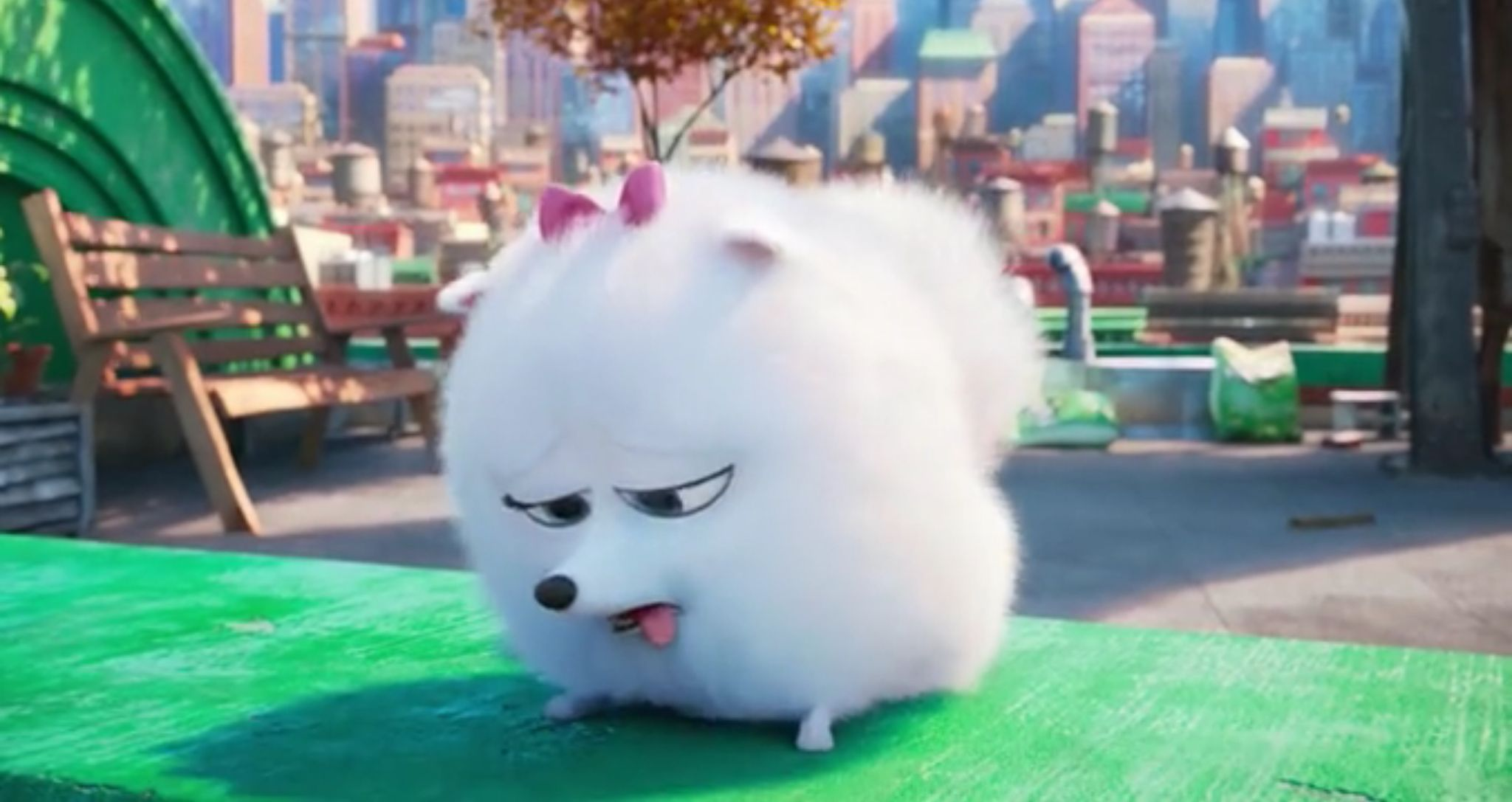 Pin By Ella The Cat Lover On Secret Life Of Pets Secret Life Of Pets Pets Secret Life