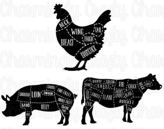 Chicken Pork Beef Pig Cow Poultry Meat Cut Chart SVG PNG Studio
