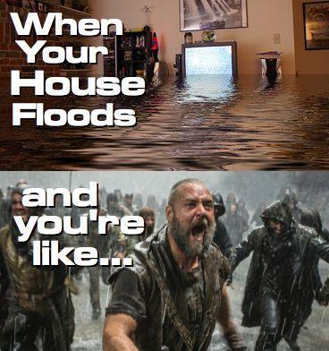 When Your House Floods And You Go Into All Out Panic Mode Noah Flood Homeflood Houseflood Funny Humor Meme Flo Flooded House Water Damage Repair Flood