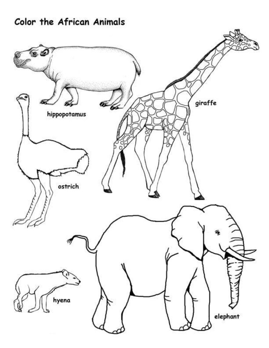 Free Fxsvxg By Animal Coloring Pages On With Hd General