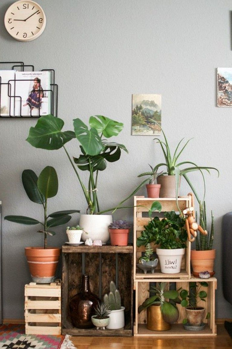 19 Inspiring Plant Decor To Inspire Arrangement Make It Look
