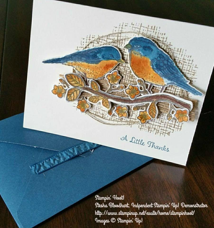 Stampin Up Best Birds Bundle 142315 Watercolor Paper 122959