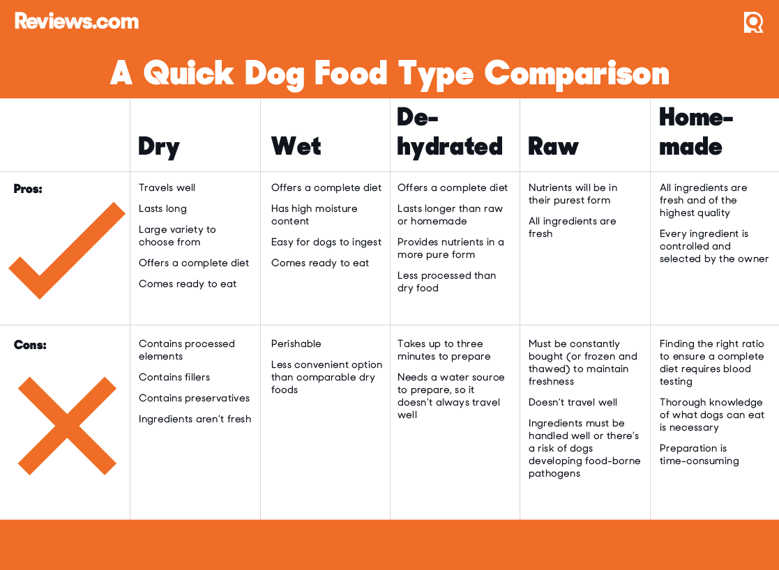 Compare Dog Food >> The 5 Best Dog Foods For 2019 Dog Food Recipes Dog Food