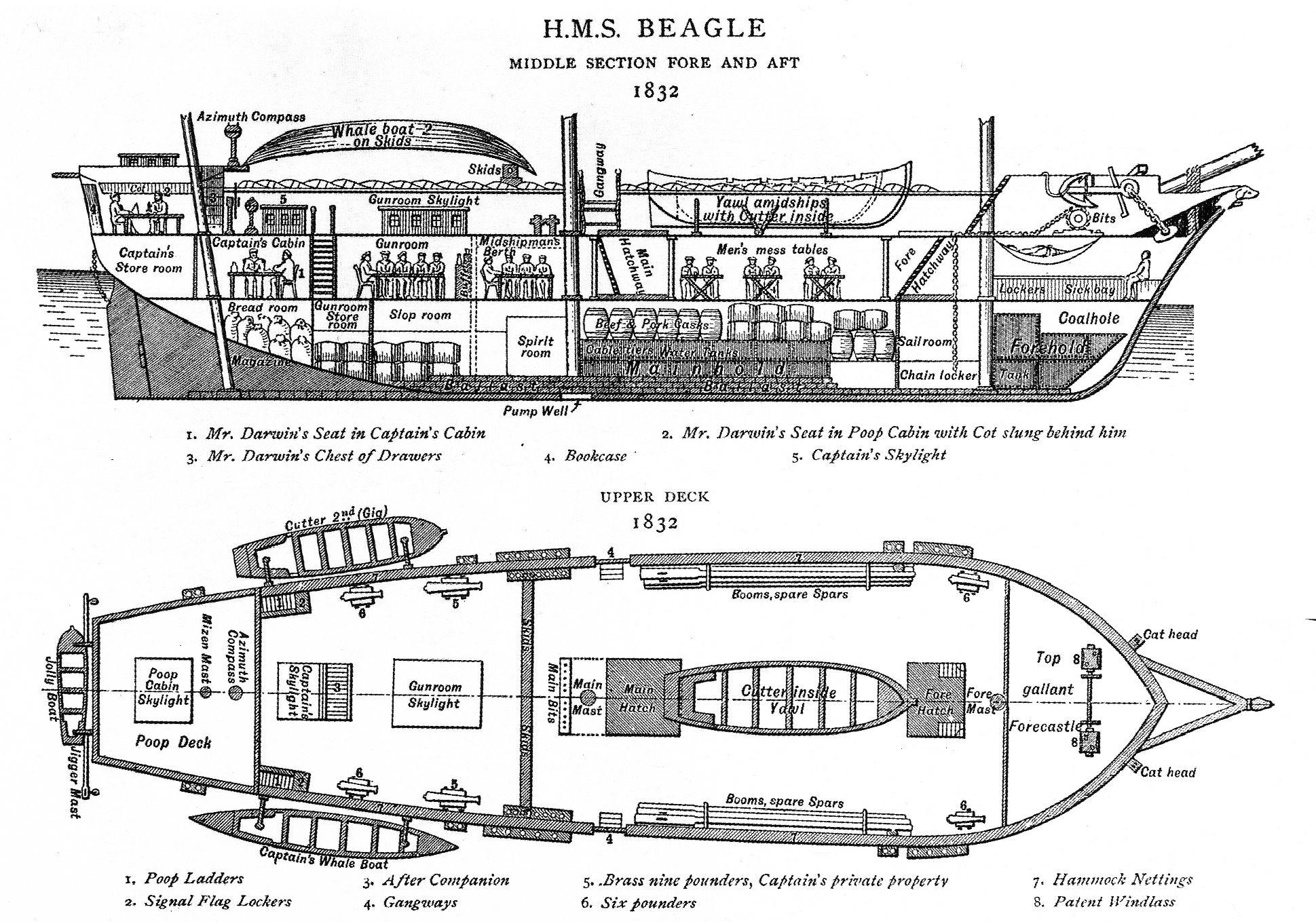 Three Masted Schooner Interior Ship Diagram