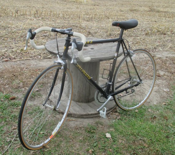 "BICYCLE STEEL FRAME PUMP CHROME 16/"" LONG CRUISER LOWRIDER BMX MTB ROAD CYCLING"