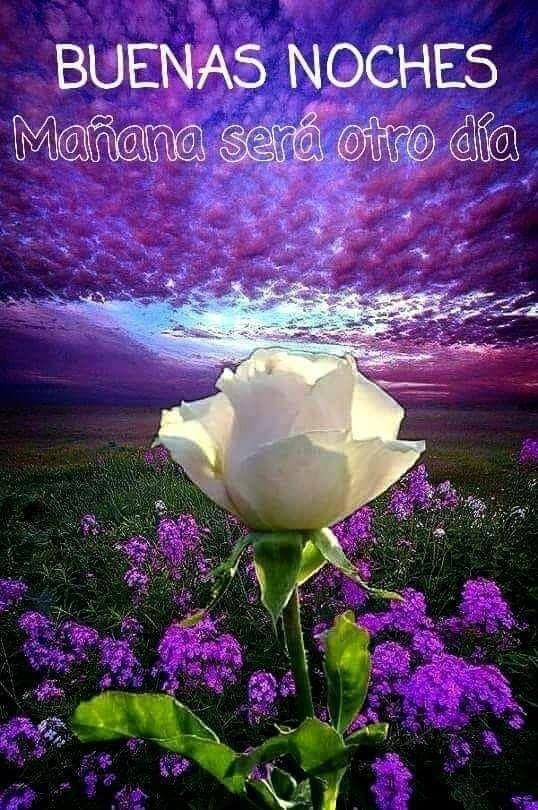 Pin De Rosse Mary Flores Montero En Sueno Fotos Buenas Noches Buenas Noches Hermoso Mensages De Buenas Noches