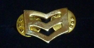 Chevron Symbol Pin
