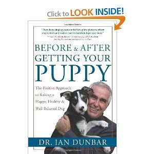 Before And After Getting Your Puppy The Positive Approach To