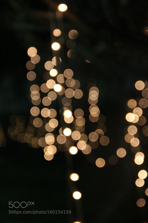 Wedding Lights by ram110209