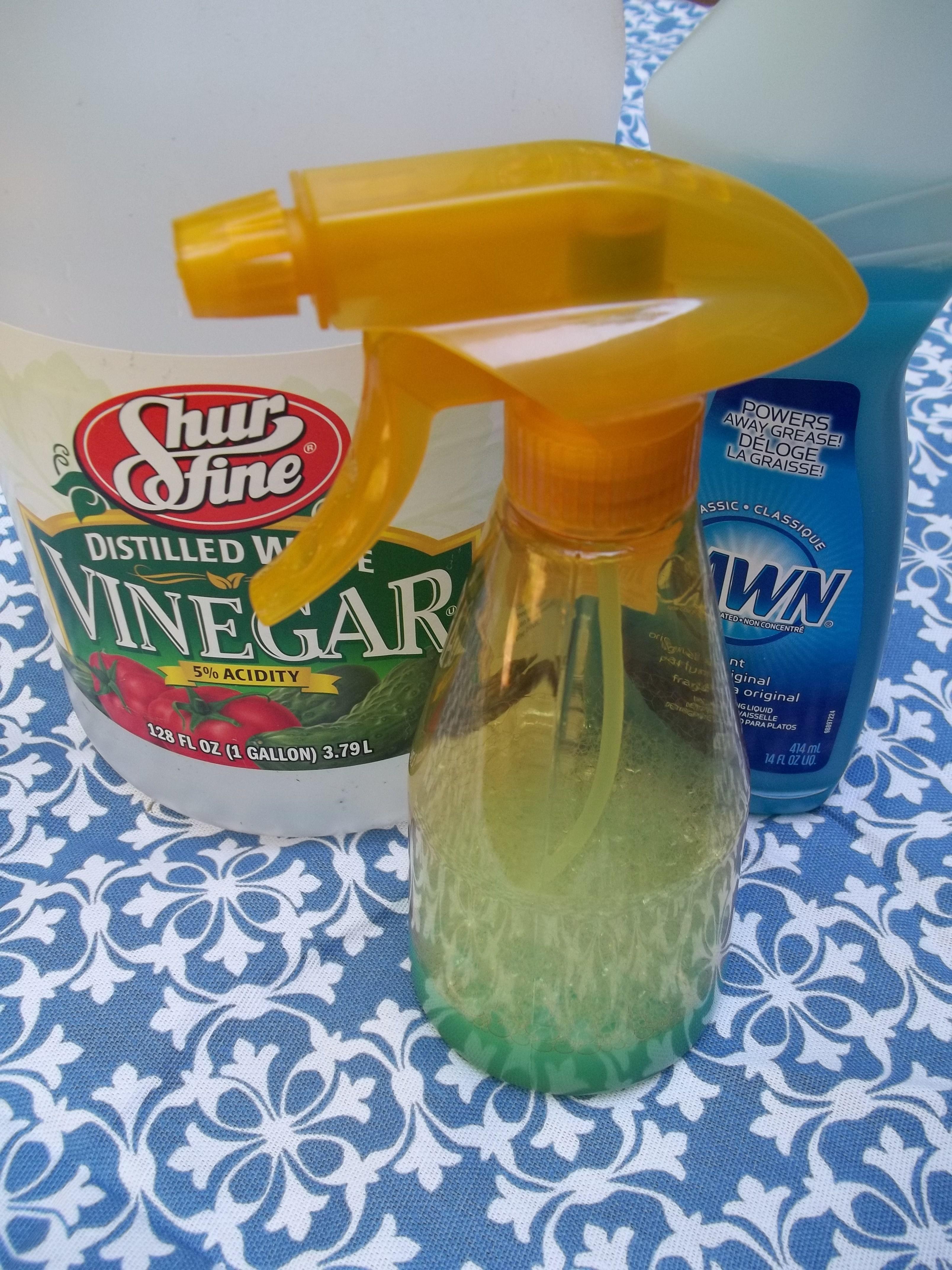 Homemade tub shower cleaner shower cleaner glass