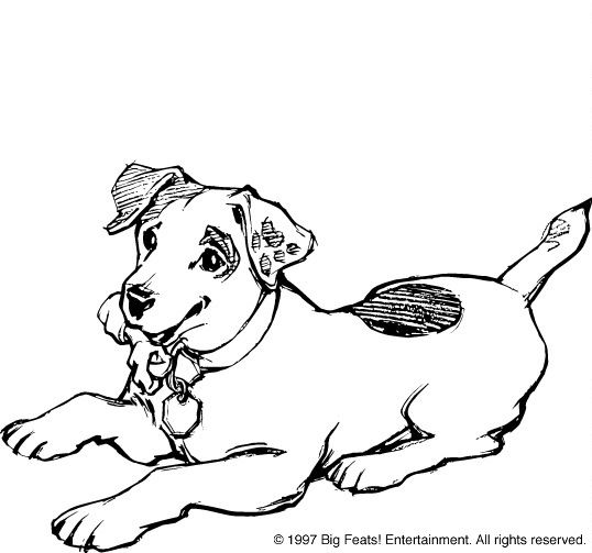 jack russell coloring pages - photo#20