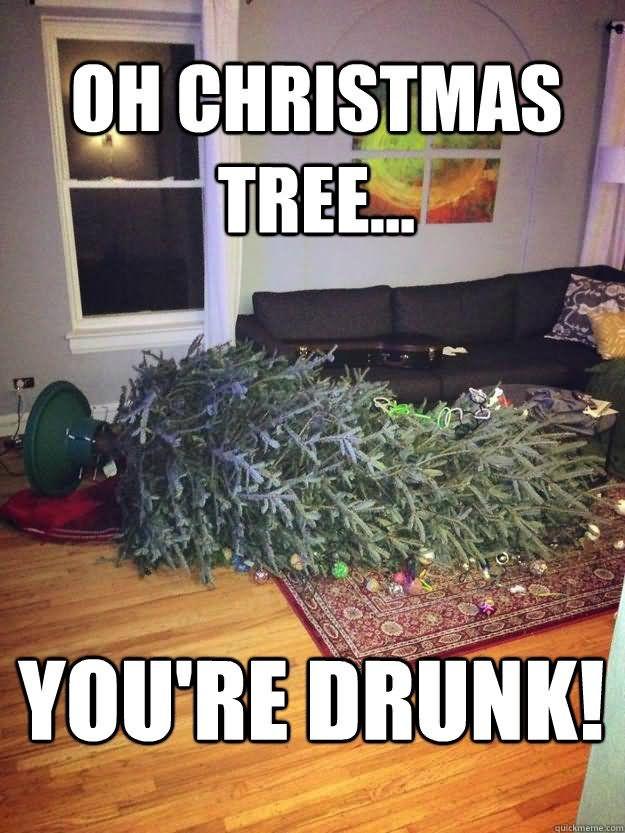 Funny Christmas Tree Memes Christmas Funny Christmas Tree