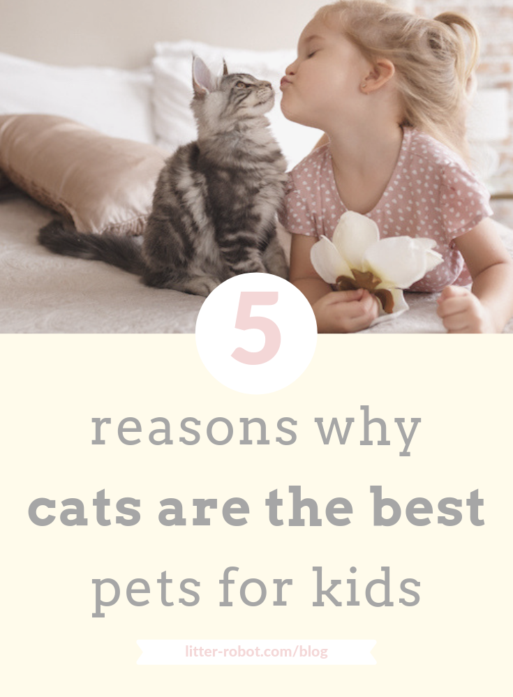 5 Reasons Why Cats Are The Best Pets For Kids Best Pets For Kids Animals For Kids Pets