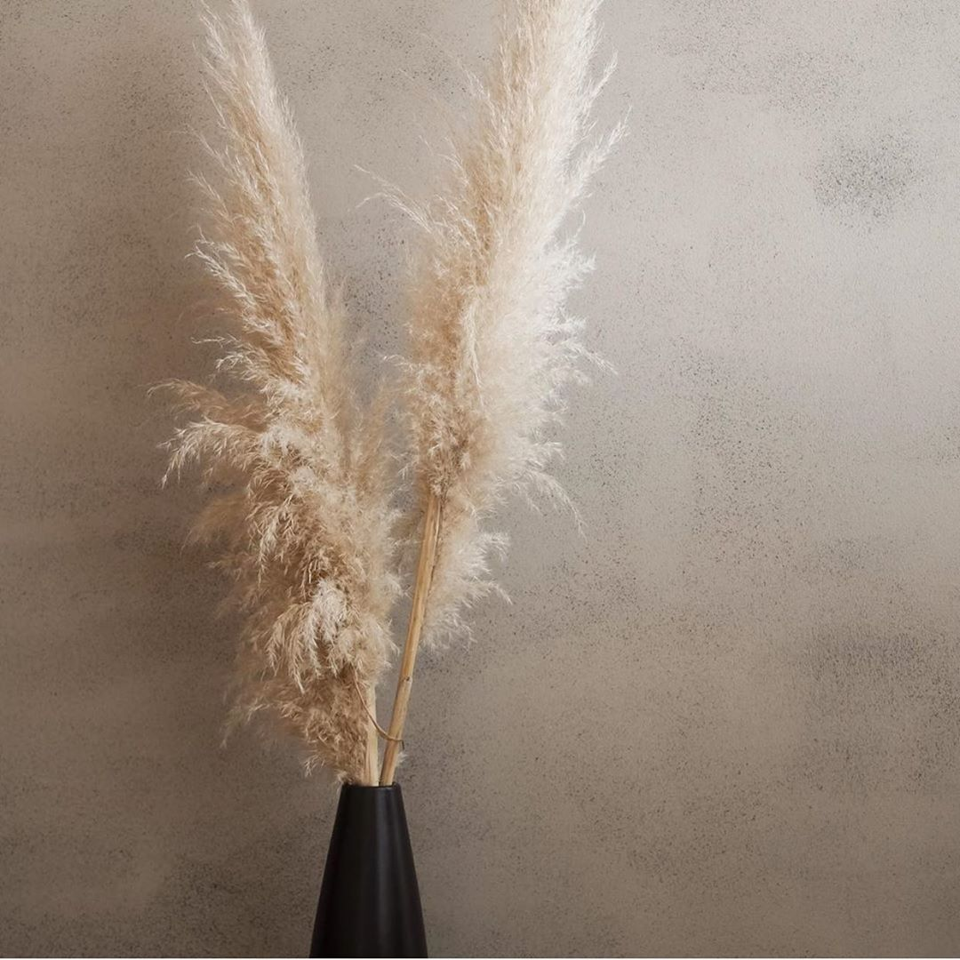 """𝐎&𝐏 𝐇𝐎𝐌𝐄's Instagram photo: """"It's the textured walls and fluffy pampas for us 😍 @the_modern_boho_home #home #homedecor #interiordesign #instahome #pampasgrass…"""""""