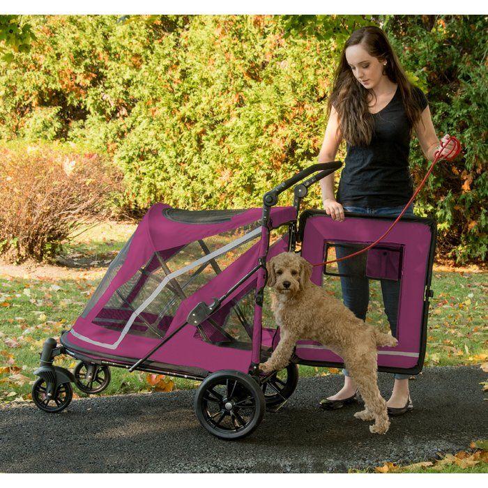 Expedition No Zip Standard Stroller Pet stroller, Dog