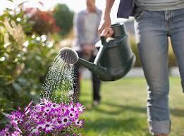 Risultati immagini per giardinaggio