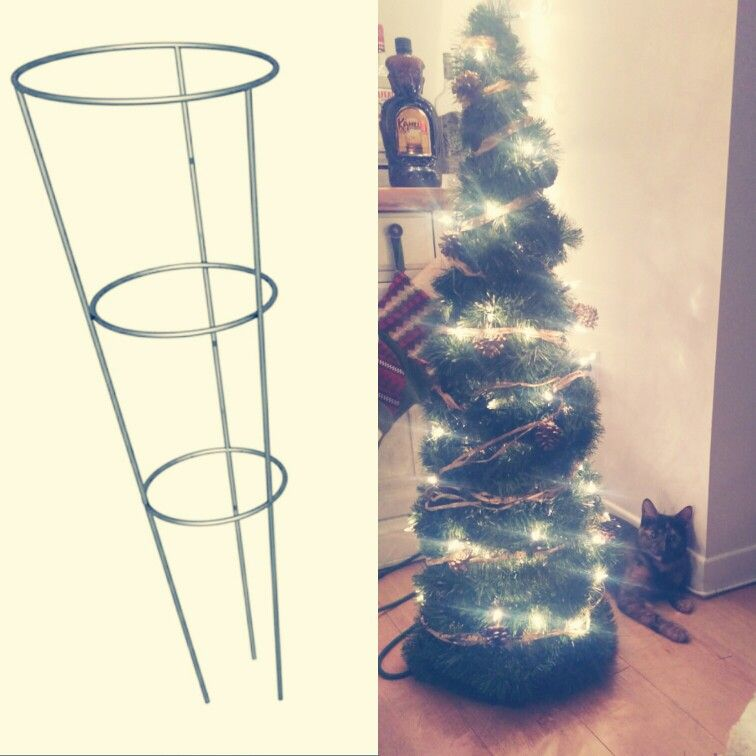 DIY christmas tree with tomatoes cage!