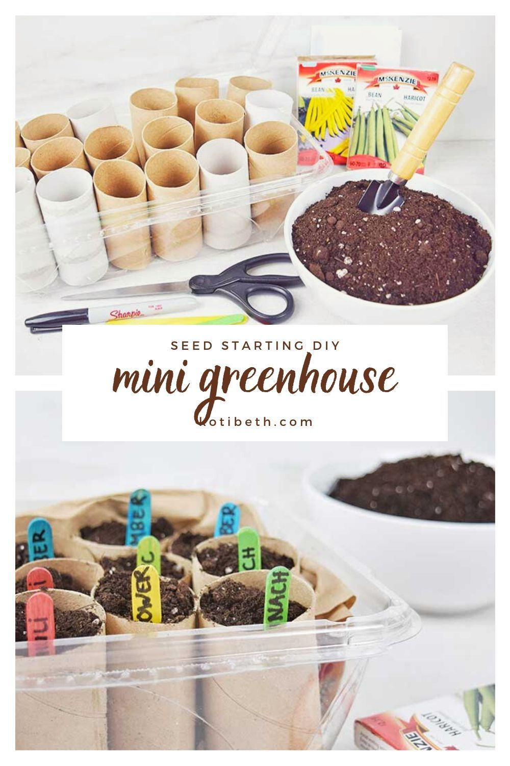 How to make a mini greenhouse to start seeds indoors