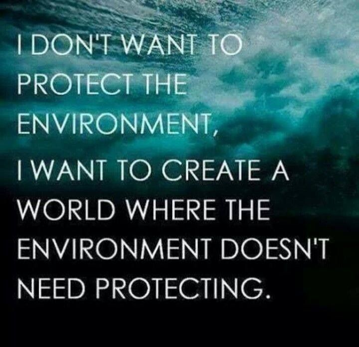 Protect Nature Quotes: I Don't Want To Protect The Environment, I Want To Create