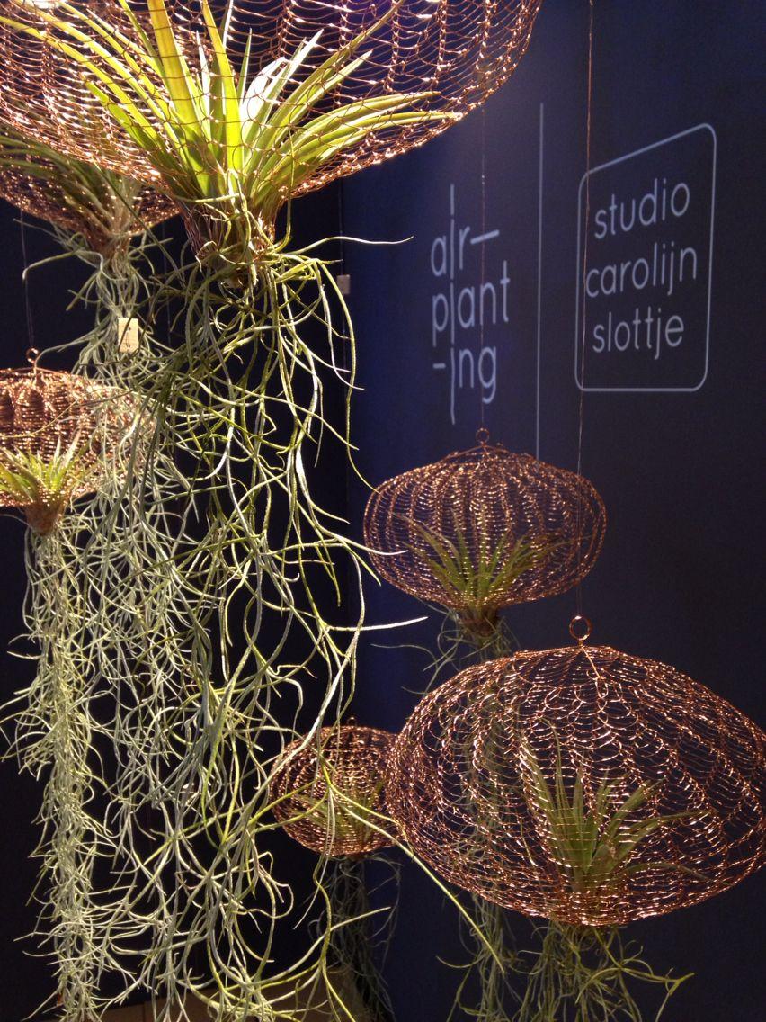 Air planting at dutch design week 2014 by carolijn slottje. plants ...
