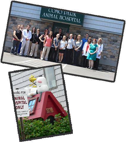 St. Paul, MN Animal hospital, Hospital, Park