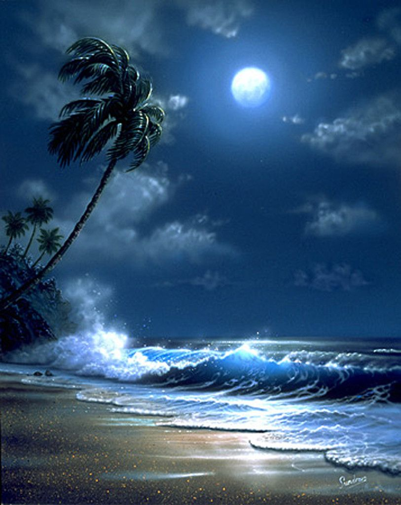 Tropical Moonlight Art Print