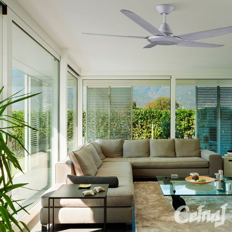 The Bernie Ceiling Fan By Jantec Features A Fresh Design And Constructed With Latest High