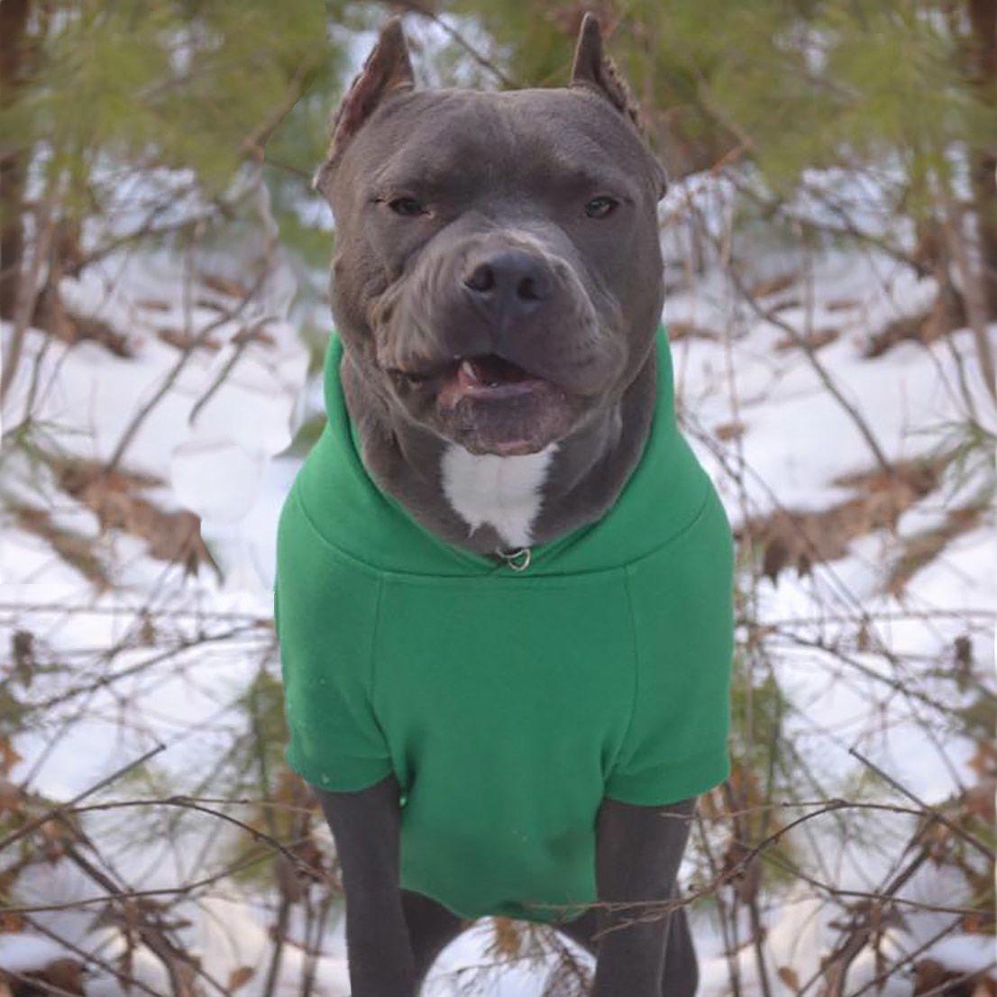 Cozy hoodie pitbulls dog hoodie dogs
