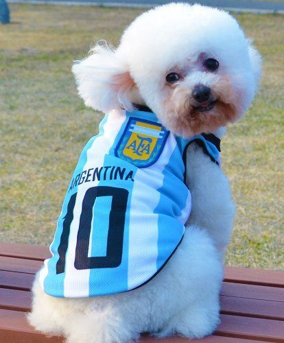 e2b3bd9ff New World Cup Soccer Football Team Argentina Jersey Shirt Pet Dog Clothes  Vest Polo for Small Dog Shirt Dog T-shirt (M) Amazon Pet Supplies