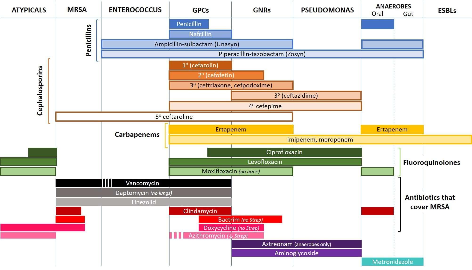 Image Result For Antibiotic Spectrum Chart