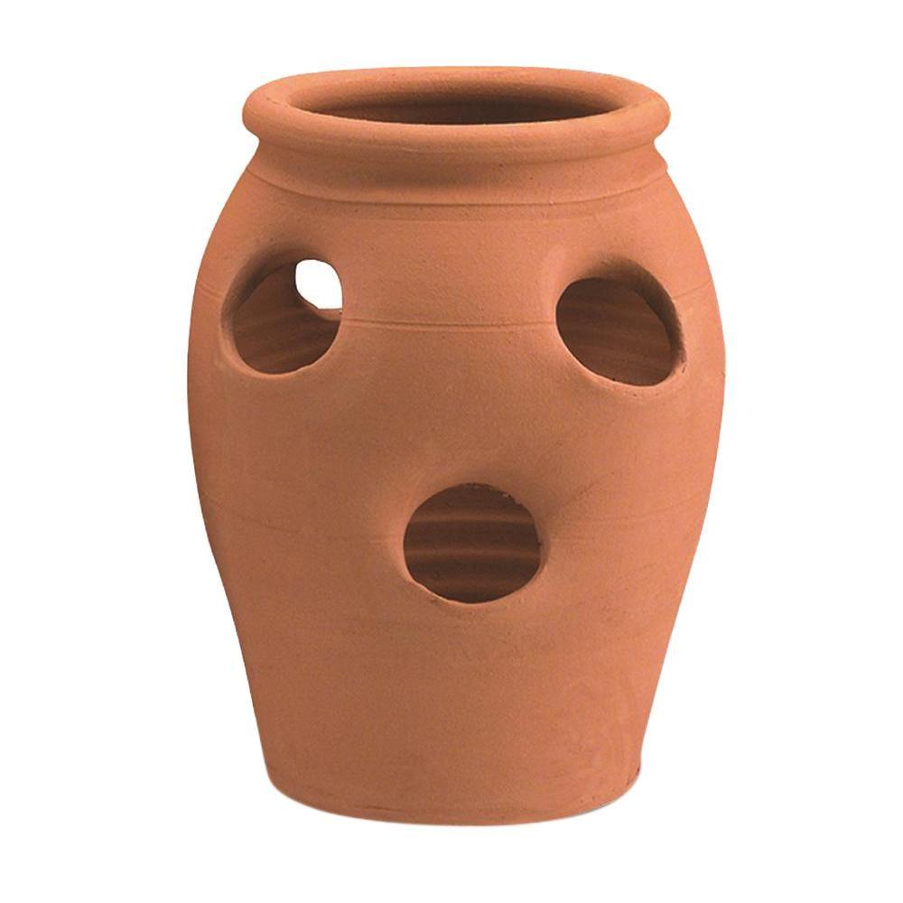 Pennington 2 Gal 6 Pocket Terra Cotta Strawberry Clay Jar 100043142 The Home Depot Strawberry Pots Terracotta Planter Pottery