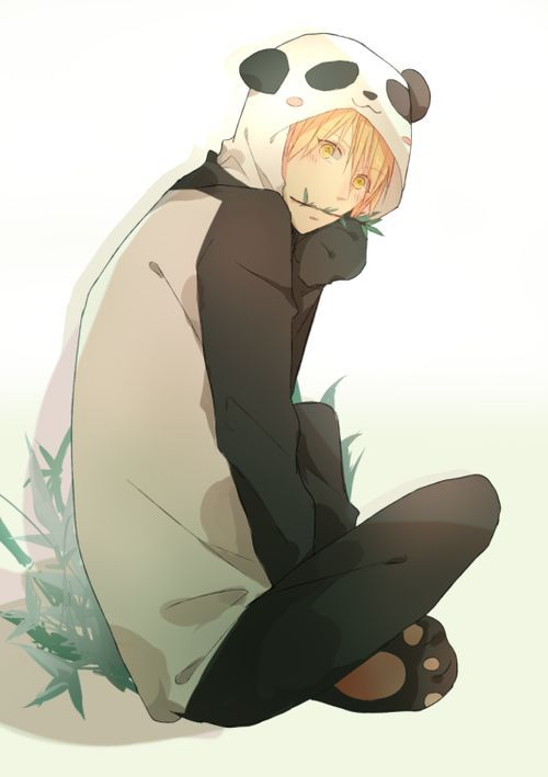 Panda Boy Anime Cute Anime Boy Anime Boy