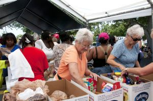 Stamp Out Hunger collects more than 15 tons of food - w/photos
