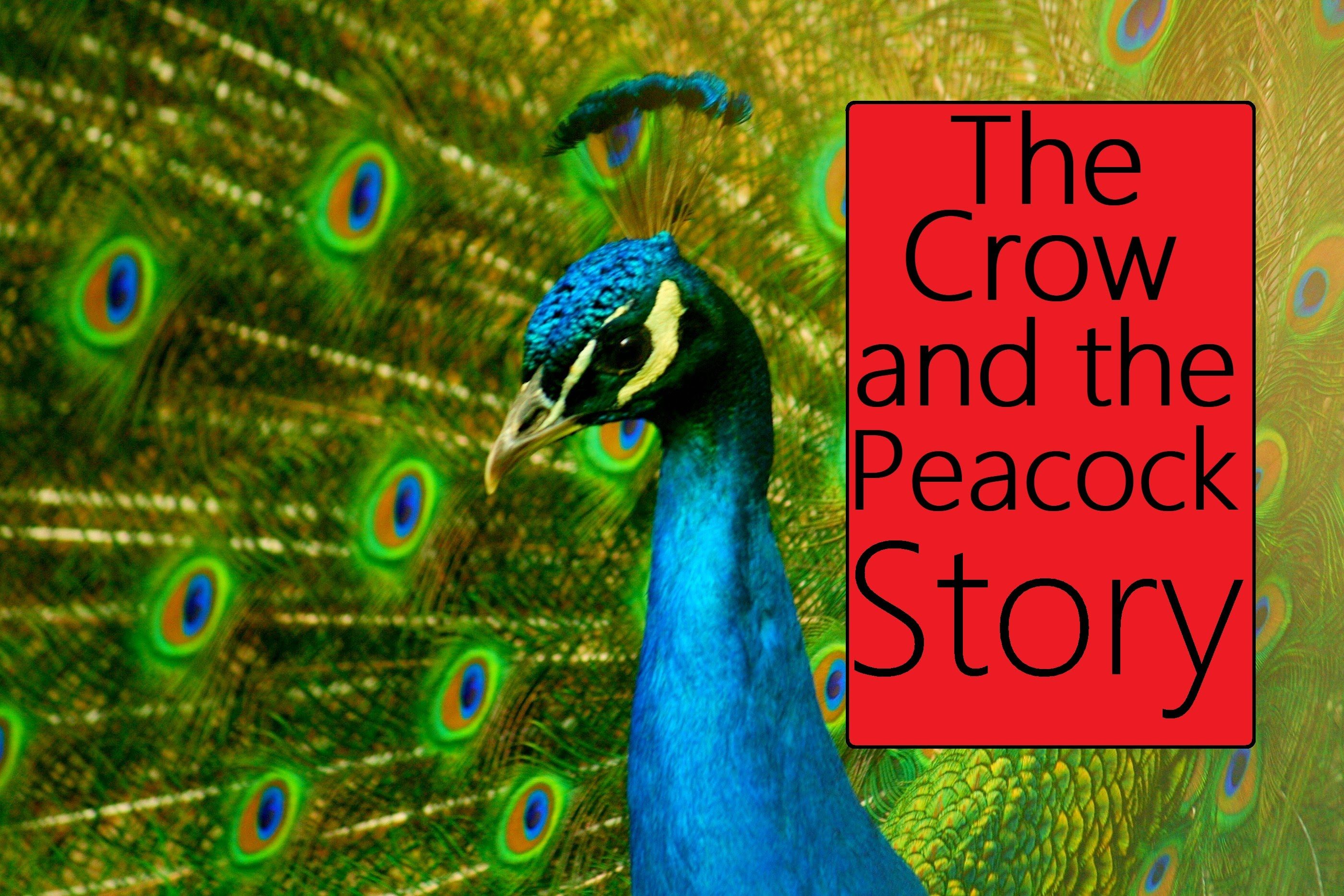 The Crow and the Peacock Story in English : Moral Stories for Kids ...