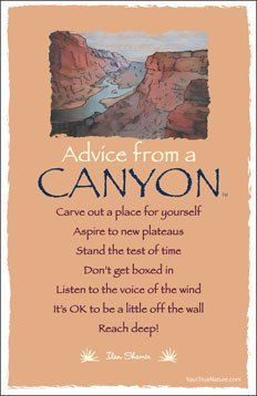 Advice From A Raven Frameable Art Postcard Your True Nature Inc