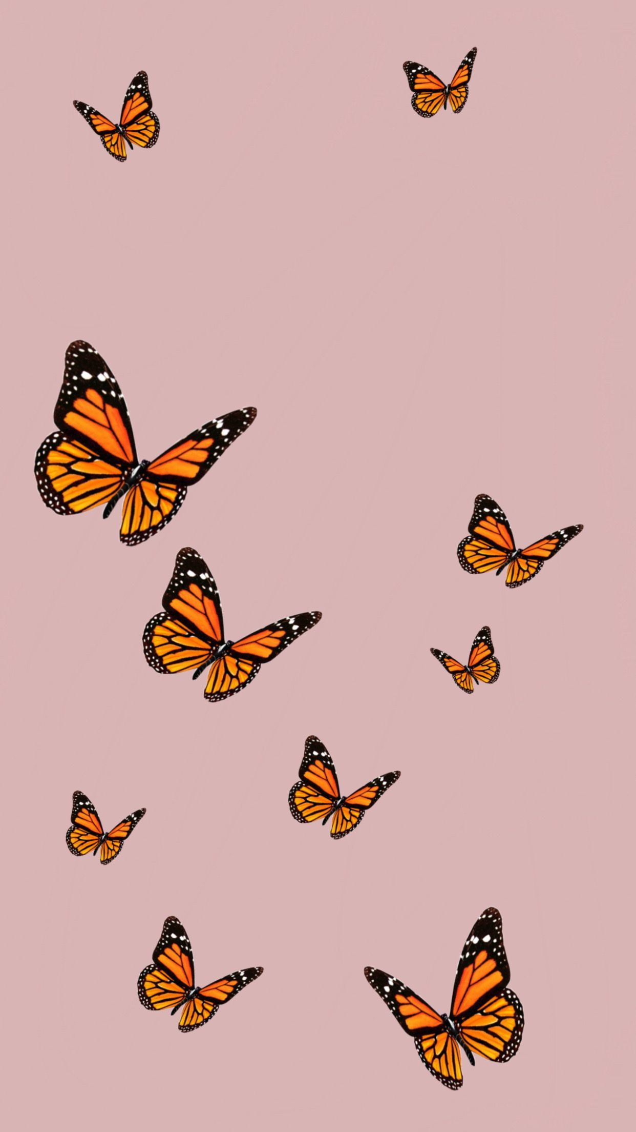 Credit Youtube Cali Kessy Disneyphonebackgrounds Butterfly