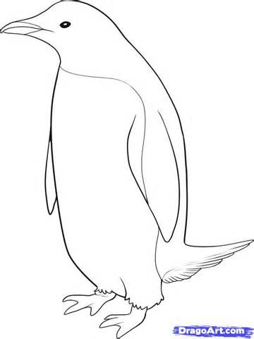Penguin Head Easy Coloring Pages