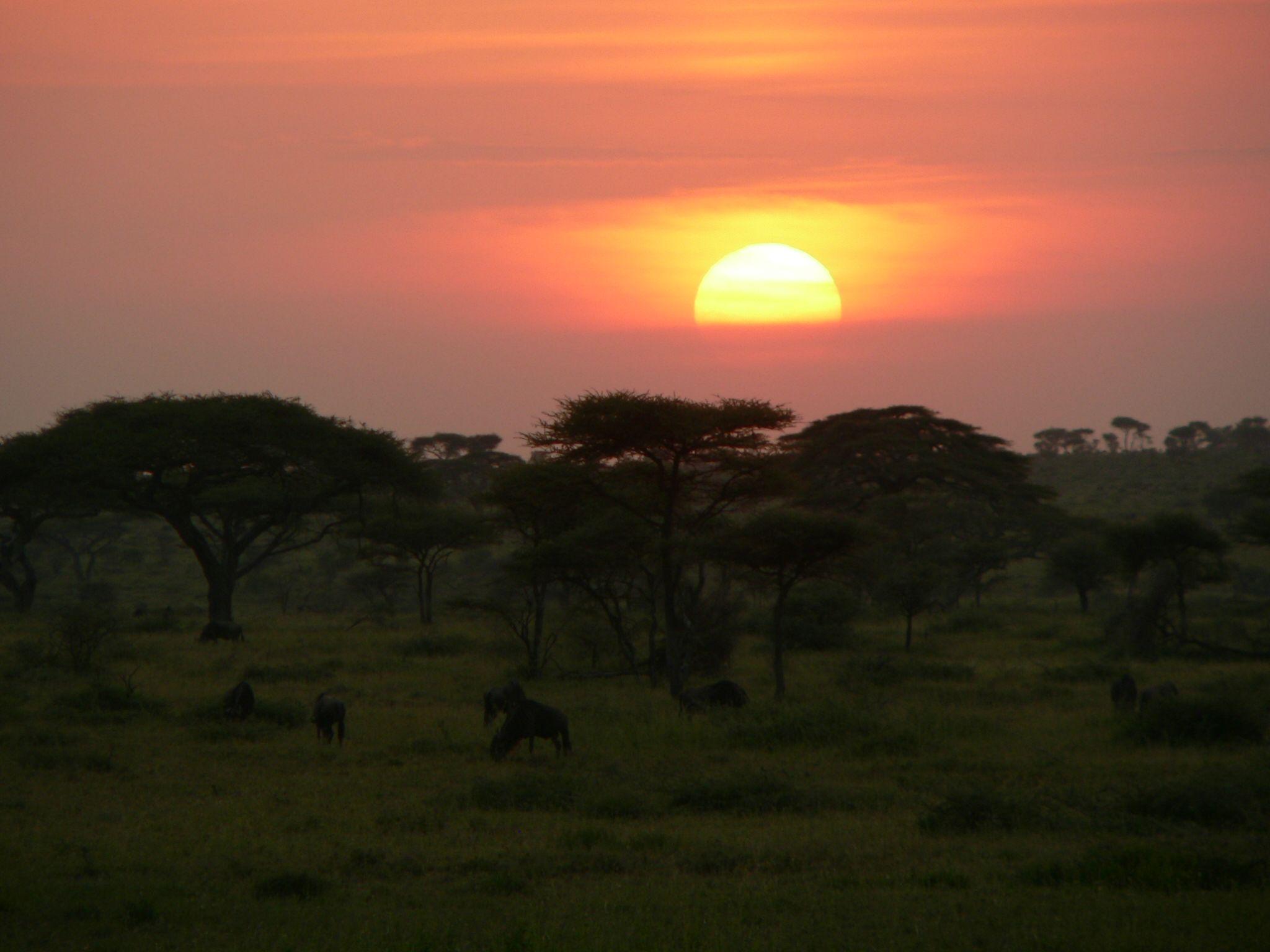 Pin By Elangeni African Adventures On Tansania Das Herz Von Afrika Celestial Outdoor Sunset