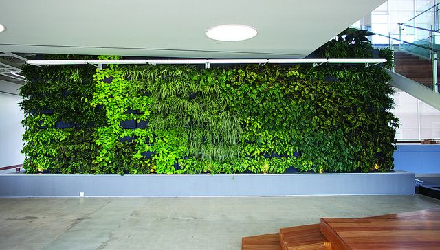 Exceptional Large Living Wall Installation In Los Angeles By Lean Arch