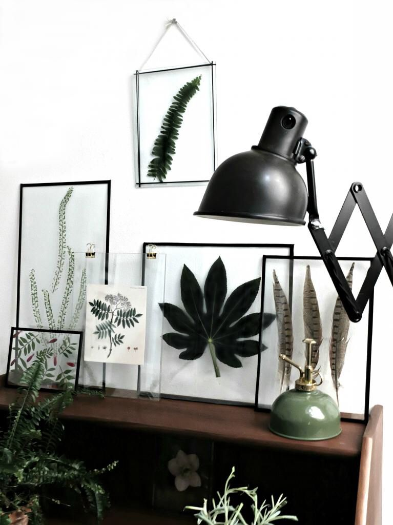 Beautiful pressed flowers in glass frames | Art/photos | Pinterest ...