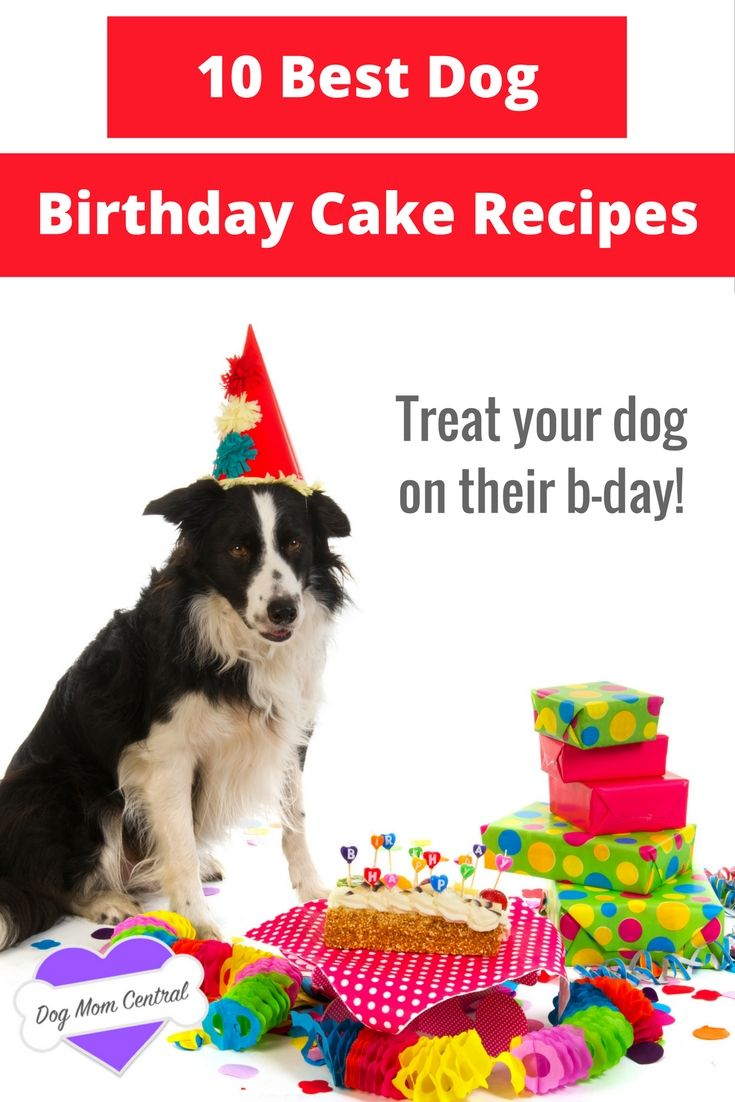 Check Out The Top Dog Birthday Cakes Recipes On Pinterest Your Dog