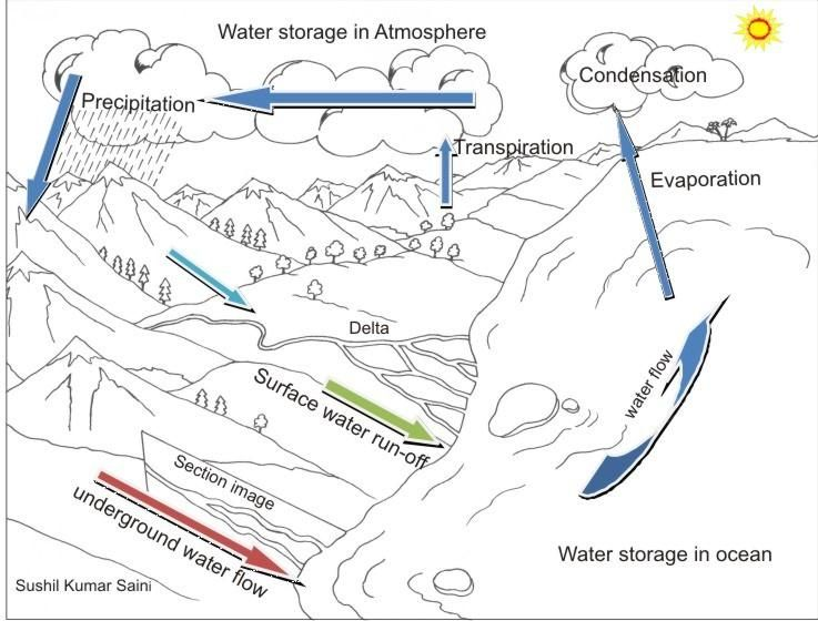 The Diagram of Water Cycle Coloring Pages to Print Out for Kids