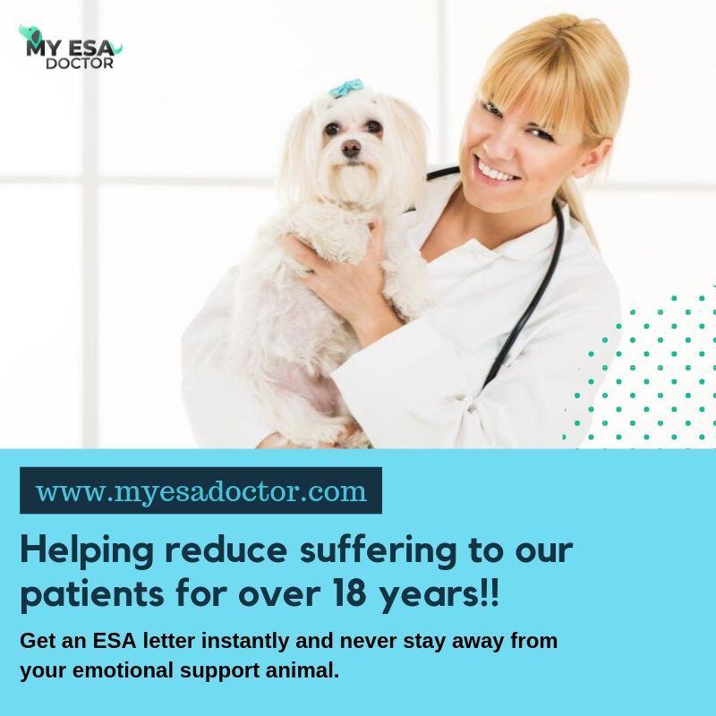 Get An Emotional Support Animal Letter Emotional support