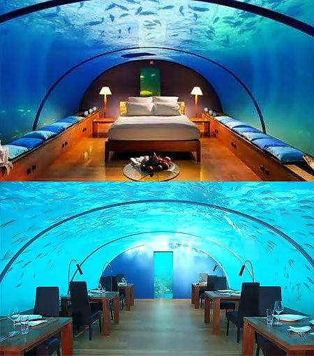 Amazing Hotels Around the World - Underwater Conrad Hotel, Maldives. #travel #travelinsurance #iloveinsurance See the world. Do your travel insurance comparison online, save time, worry, and loads of money. http://www.comparetravelinsurance.com.au/
