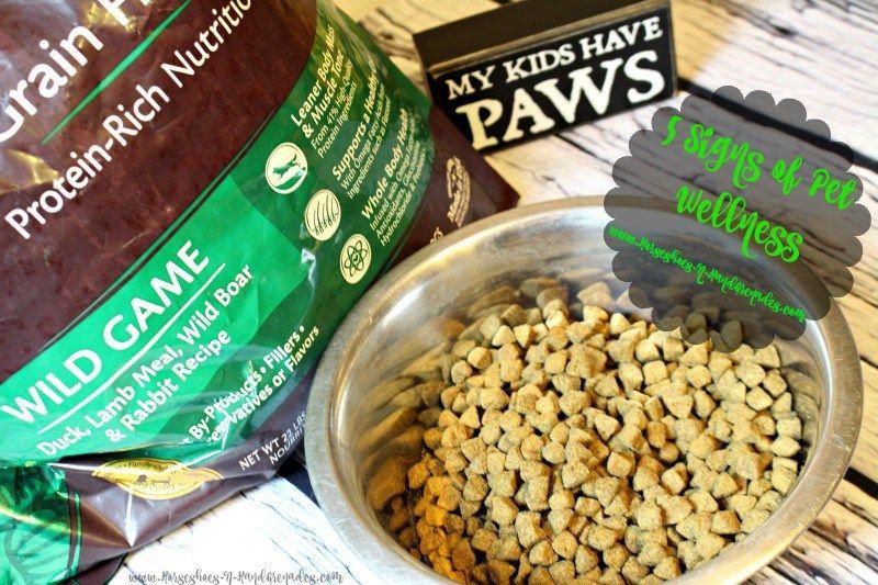 5 Signs of Pet Wellness WellnessPet Healthy pets, Pet