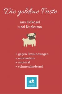 Hundezeitung | Hausapotheke für Hunde – Meine Geheimtipps | http://hundezeitung.info