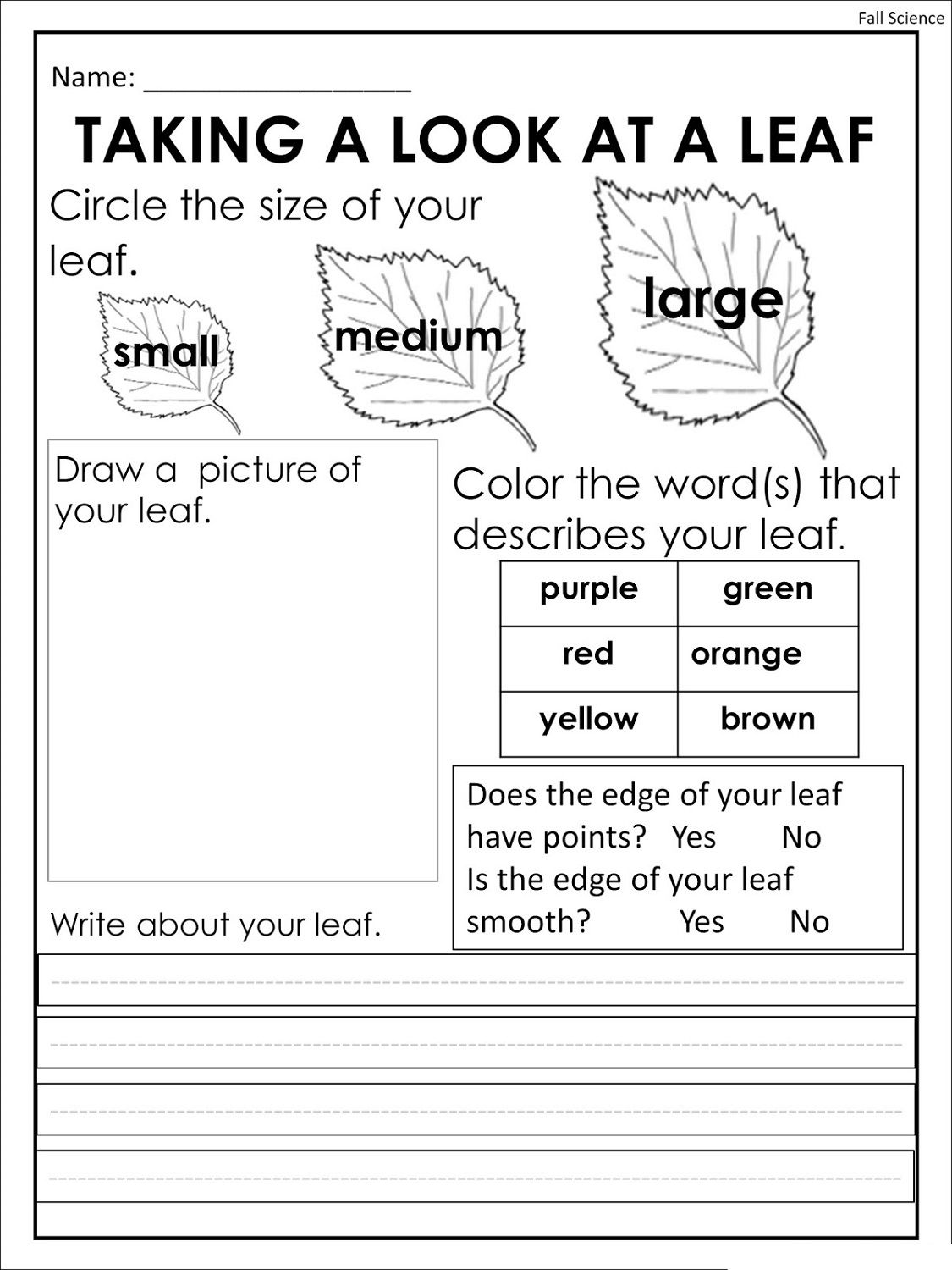 Free Printing Worksheets Colors For Training