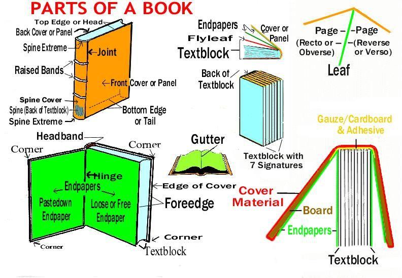 Partes De Un Libro En Inglés.