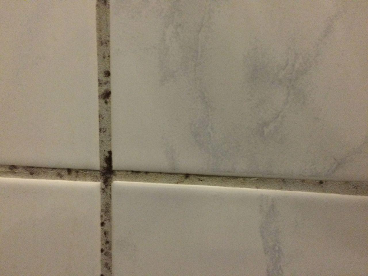 Dusche Reinigen Mit Hausmitteln Klappt Auch Bei Schimmel Duschkabine Reinigen Duschkabine Fugen In Der Dusche Reinigen
