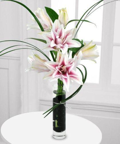 Benevas signature stargazer lilies with several layers of blooms sarasota florist beneva flowers voted best florist sarasota fl mightylinksfo